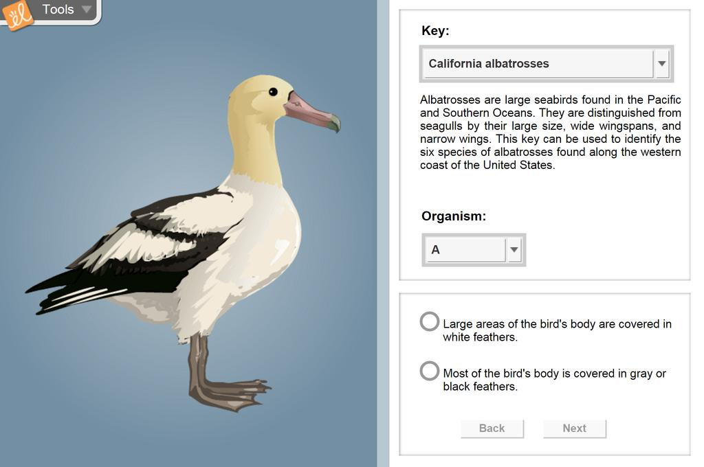 Screenshot of Dichotomous Keys Gizmo