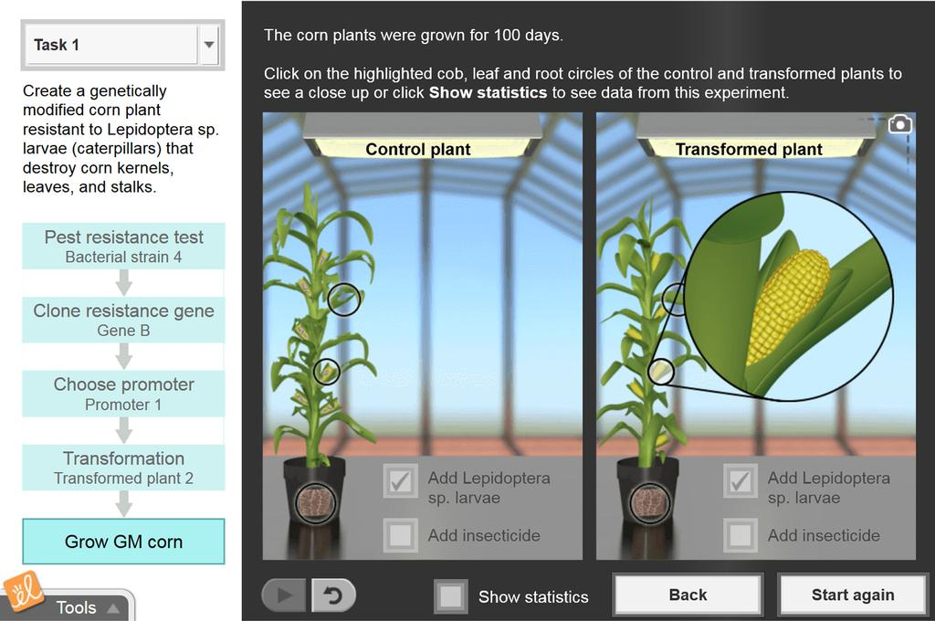 Screenshot of Genetic Engineering Gizmo