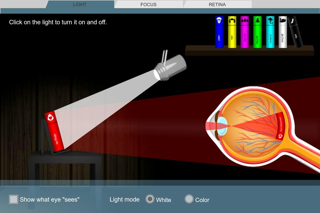 Screenshot of Eyes and Vision 1 - Seeing Color Gizmo
