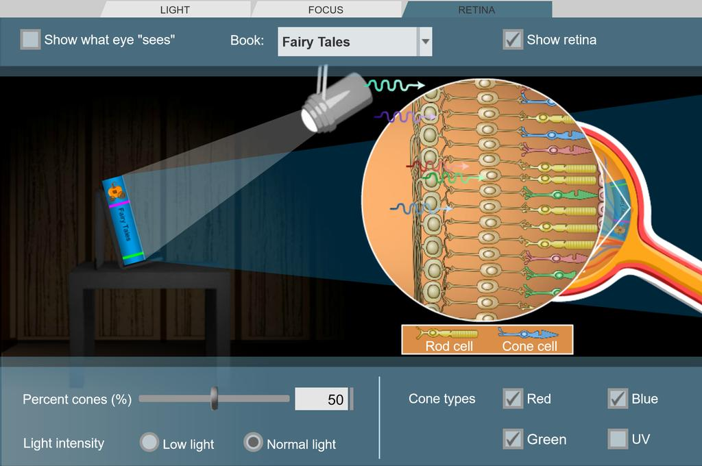Screenshot of Eyes and Vision 3 - Sensing Light Gizmo
