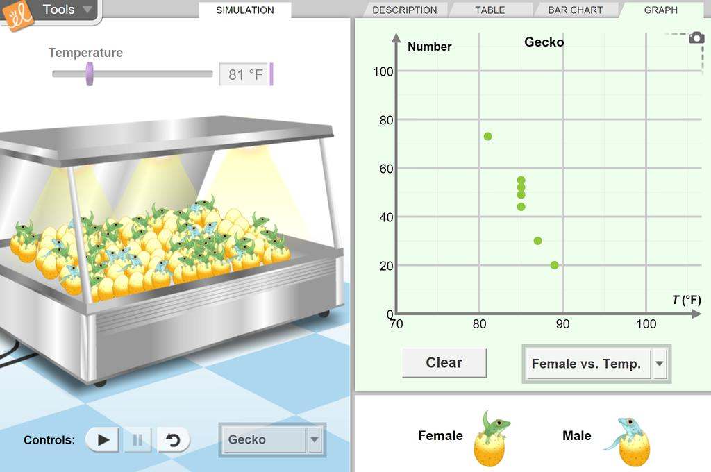 Screenshot of Temperature and Sex Determination Gizmo