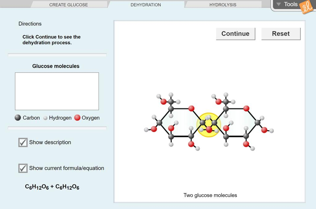 Screenshot of Dehydration Synthesis Gizmo